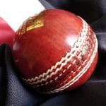 Cricket image 1
