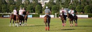 polo referee 2